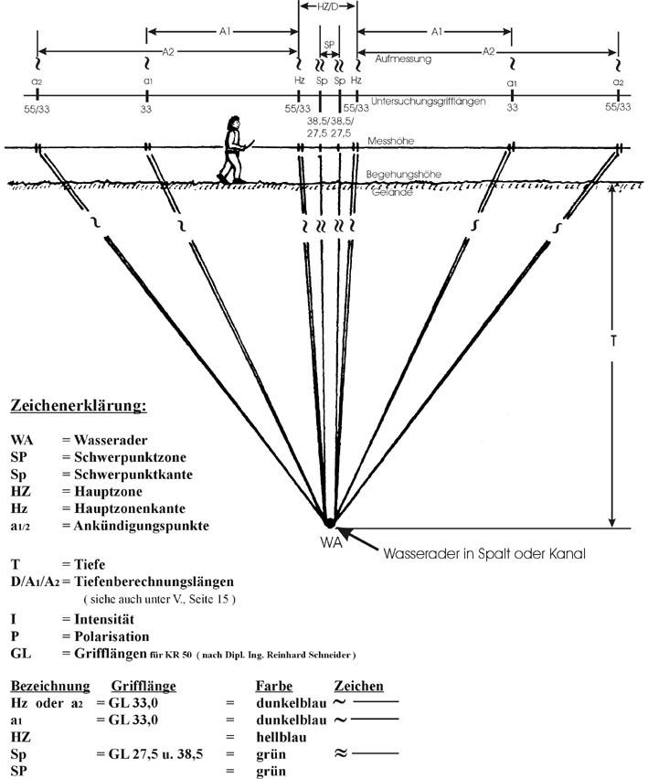 Die radiästhetische Wasseraderspektroide mit Wasseraderschwerpunkt, -Hauptzone und Ankündigungslinien